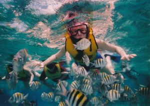 snorkeling in mare