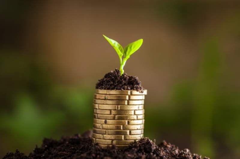 Prestito banco posta flessibile linee guida per l 39 uso for Puoi ottenere un prestito per costruire una casa